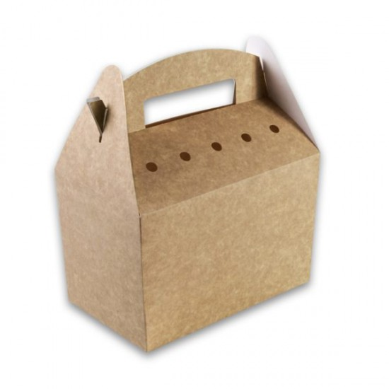 Kraft-karton-Snackbox-met-handvat-192x112x132-kidsbox-2-600x600